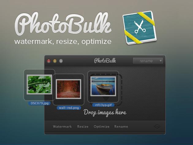 photobulks